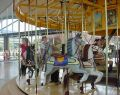 Geelong Waterfront Carousel