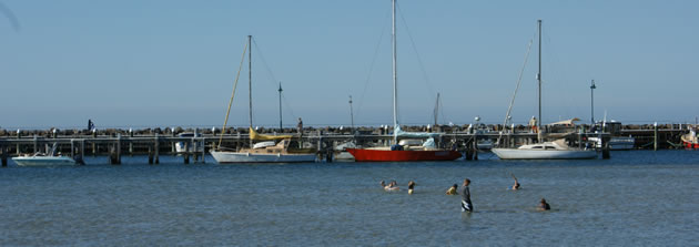 portarlington-harbor